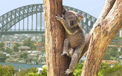 10 bijzondere plekken & belevingen voor je reis door Oost-Australië