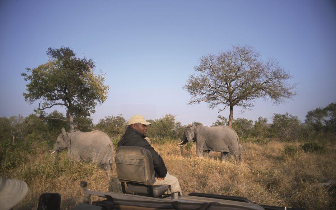 Het verschil tussen een private game reserve en national park in Zuid-Afrika