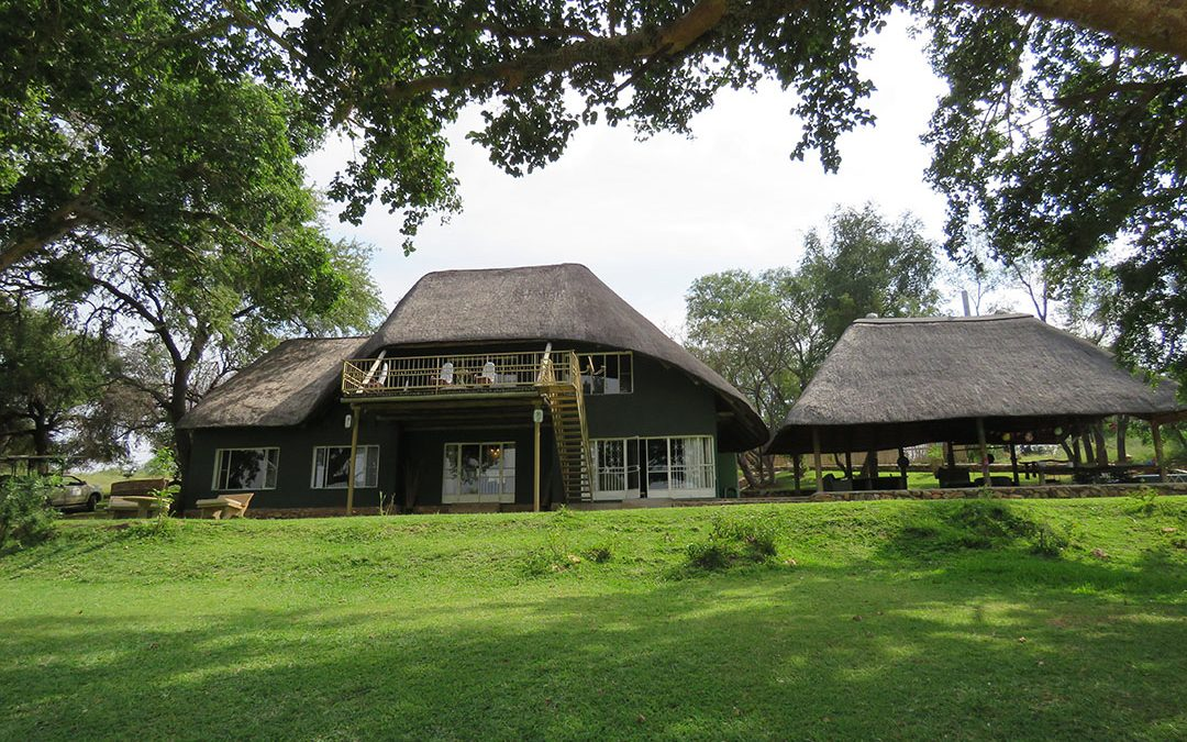 Maninghi Lodge in Balule Game Reserve