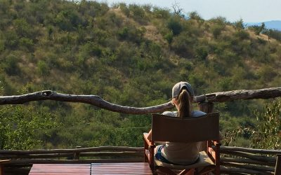 Buffalo Ridge Safari Lodge in Madikwe Game Reserve