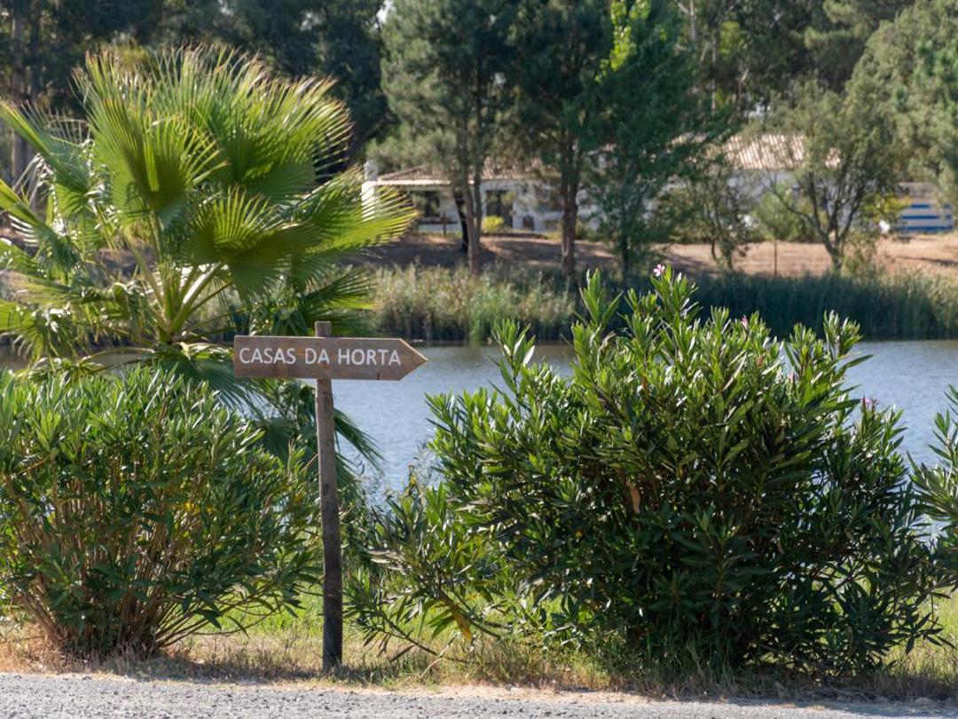 huis-privezwembad-alentejo-portugal
