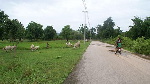 Fietsen-in-thailand
